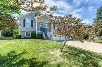3932 SW Chattham, Lee's Summit, MO